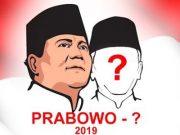 Mencari Cawapres Prabowo di Pilpres 2019